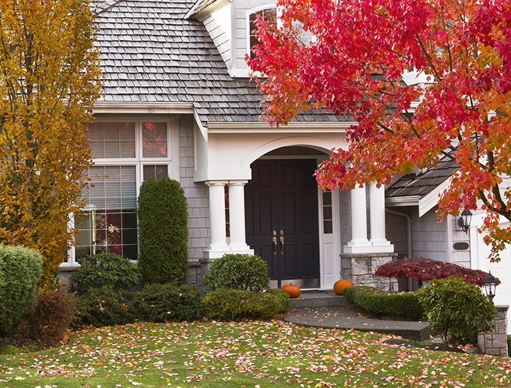 Modern home surrounded by fall season with maple leaves on ground and trees turning bright colors