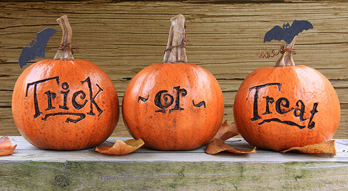 trick or treat written on three pumpkins